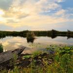 Oferta calatorie Delta Dunarii 2013