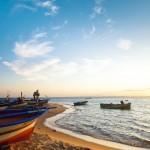 Oferte vacante strainatate Tunisia mai 2013