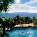 Super oferta seniori Spania  Canare insula Tenerife 2013
