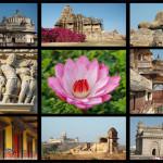 Oferta Speciala India